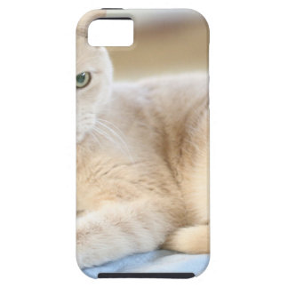Larry iPhone 5 Carcasa