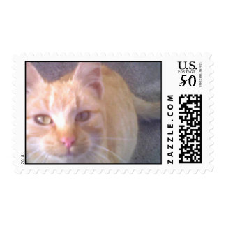 Larry Looking Postage