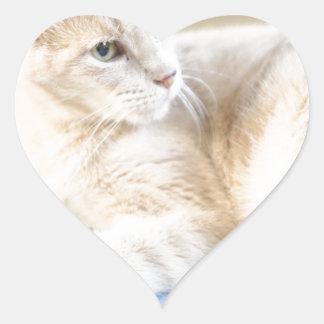Larry Pegatina En Forma De Corazón