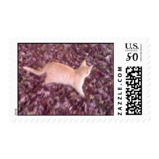 Larry playing in leaves postage