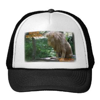 LARRY STICK TRUCKER HAT