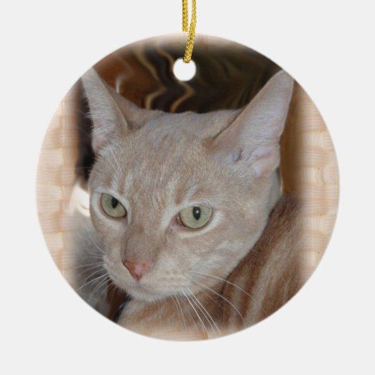 Larry the Cat Ceramic Ornament