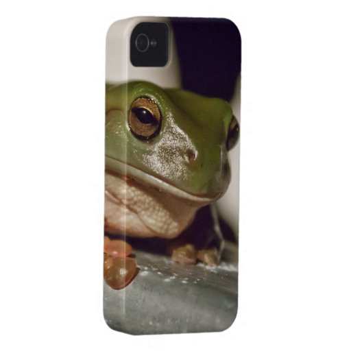 Larry the Laconic Tree Frog Blackberry Bold Case