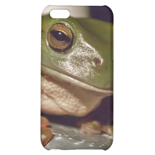 Larry the Laconic Tree Frog iPhone 5C Cases