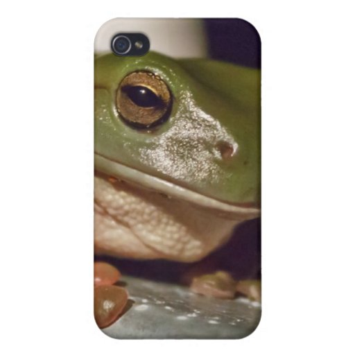 Larry the Laconic Tree Frog iPhone 4/4S Covers