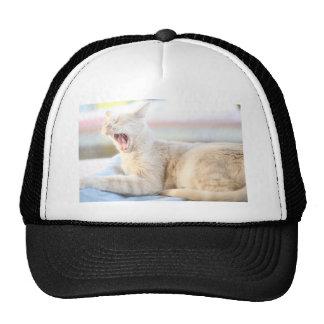 Larry Trucker Hat