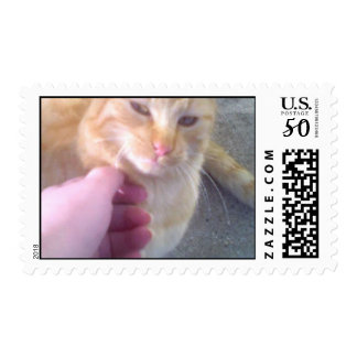 Larry watch my whiskers postage
