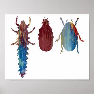 Larva, pupa, beetle poster