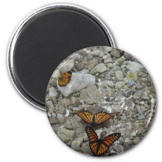 Las 3 mariposas imán para frigorifico