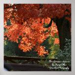 Las 4 estaciones - poster del otoño