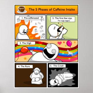 Las 5 fases de toma del cafeína póster