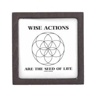 Las acciones sabias son la semilla de la geometría caja de regalo de calidad
