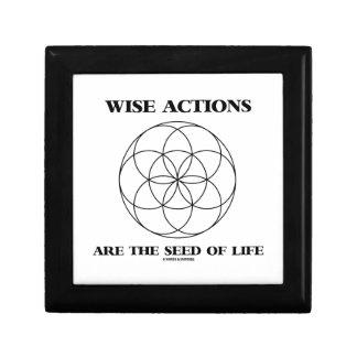 Las acciones sabias son la semilla de la geometría caja de recuerdo