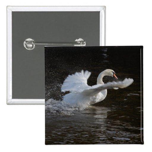 Las alas Outstretched el cisne Pins