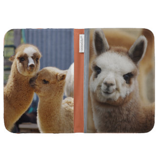 Las alpacas lindas encienden la caja