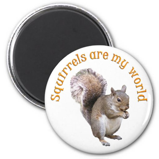 Las ardillas son mi mundo imán redondo 5 cm