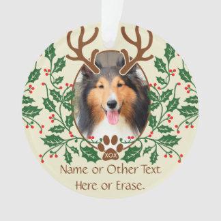 Las astas del navidad para el perro/el gato