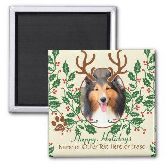 Las astas del navidad para el perro/el gato imán cuadrado