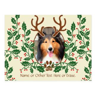 Las astas del navidad para el perro/el gato tarjeta postal