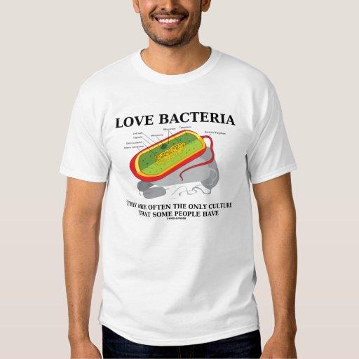 Las bacterias del amor crían a menudo solamente al playeras