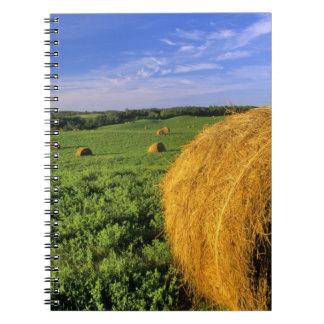 Las balas de heno acercan a Bottineau Dakota del N Spiral Notebook