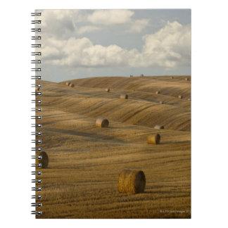 Las balas y el balanceo de heno ajardinan, Toscana Cuaderno