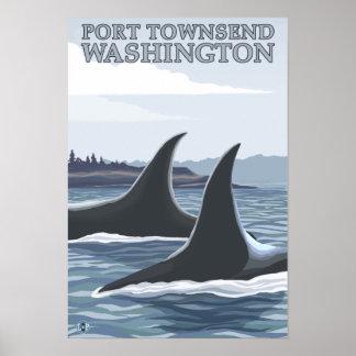 Las ballenas #1 de la orca - vire a Townsend hacia Póster