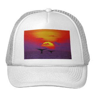 Las ballenas atan en la puesta del sol gorros bordados