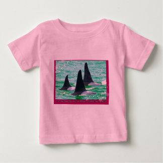 Las ballenas de la orca vienen navegación el día playera