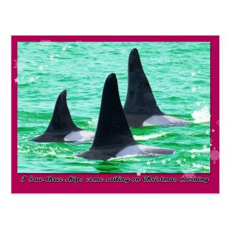 Las ballenas de la orca vienen navegación el día postal