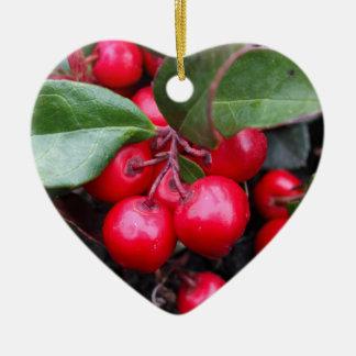 Las bayas rojas en un teaberry forran el procumbe adorno navideño de cerámica en forma de corazón