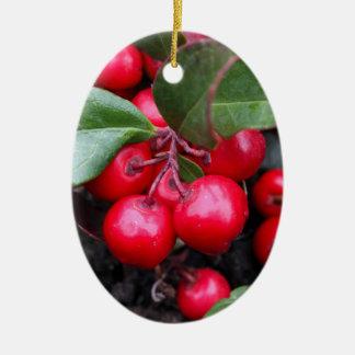 Las bayas rojas en un teaberry forran el procumbe adorno navideño ovalado de cerámica