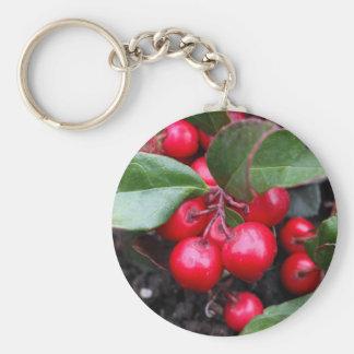 Las bayas rojas en un teaberry forran el procumbe llavero redondo tipo pin