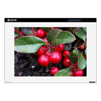Las bayas rojas en un teaberry forran el procumbe skins para portátil