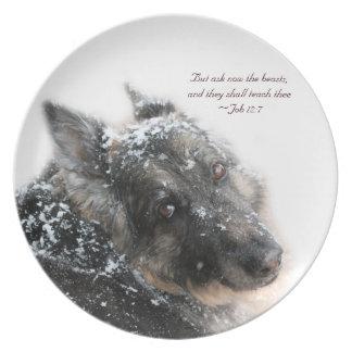 Las bestias enseñarán a Thee - 12:7 del trabajo Plato Para Fiesta