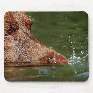 Las burbujas que soplan del perro sospechan cerca alfombrilla de raton