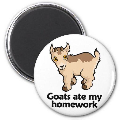 Las cabras comieron mi preparación imán de frigorifico