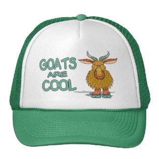 Las cabras son frescas gorros bordados