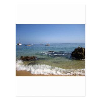 Las Caletas beach at Puerto Vallarta, Mexico Postcard