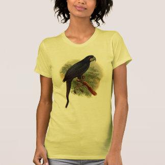 Las camisetas sin mangas de las mujeres de