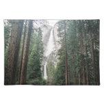 Las cataratas de Yosemite Manteles Individuales