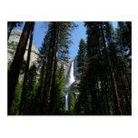Las cataratas de Yosemite y maderas en el parque Postal