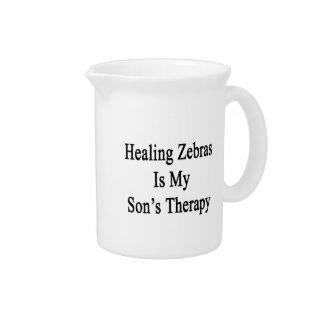 Las cebras curativas son la terapia de mi hijo jarra de beber