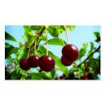Las cerezas rojas - añada su propio tacto tarjetas de visita