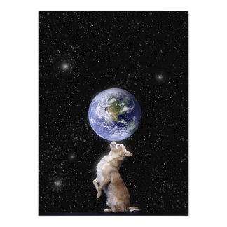 Las chihuahuas gobiernan la invitación del mundo