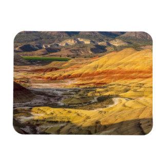 Las colinas pintadas en las camas fósiles 3 del imanes