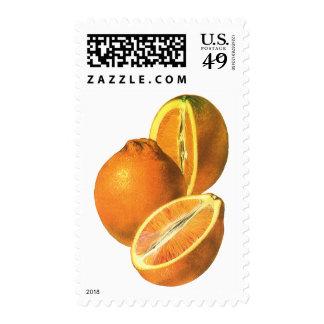 Las comidas del vintage, dan fruto los naranjas estampilla