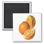 Las comidas del vintage, dan fruto los naranjas imán cuadrado