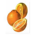 Las comidas del vintage, dan fruto los naranjas postal
