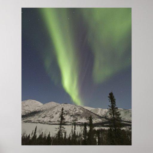 Las cortinas de los borealis de la aurora bailan a poster